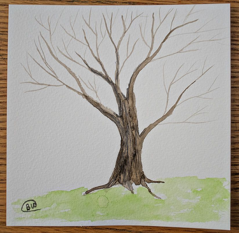 Wanted To Try A Tree With No Leaves On It Watercolor On 6x8