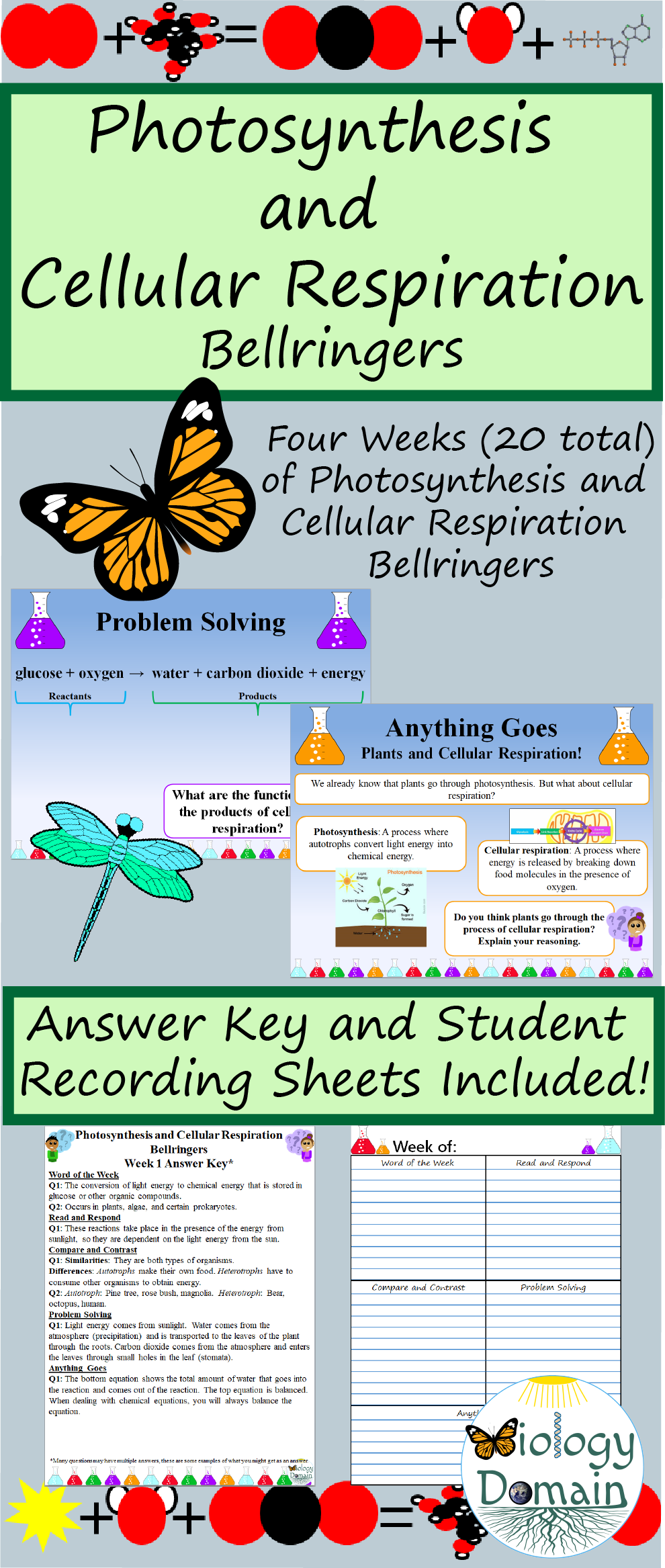 Pin By Jennifer Stevens On 6th Grade Photosynthesis And Cellular Respiration Bellringers Photosynthesis [ 2334 x 990 Pixel ]
