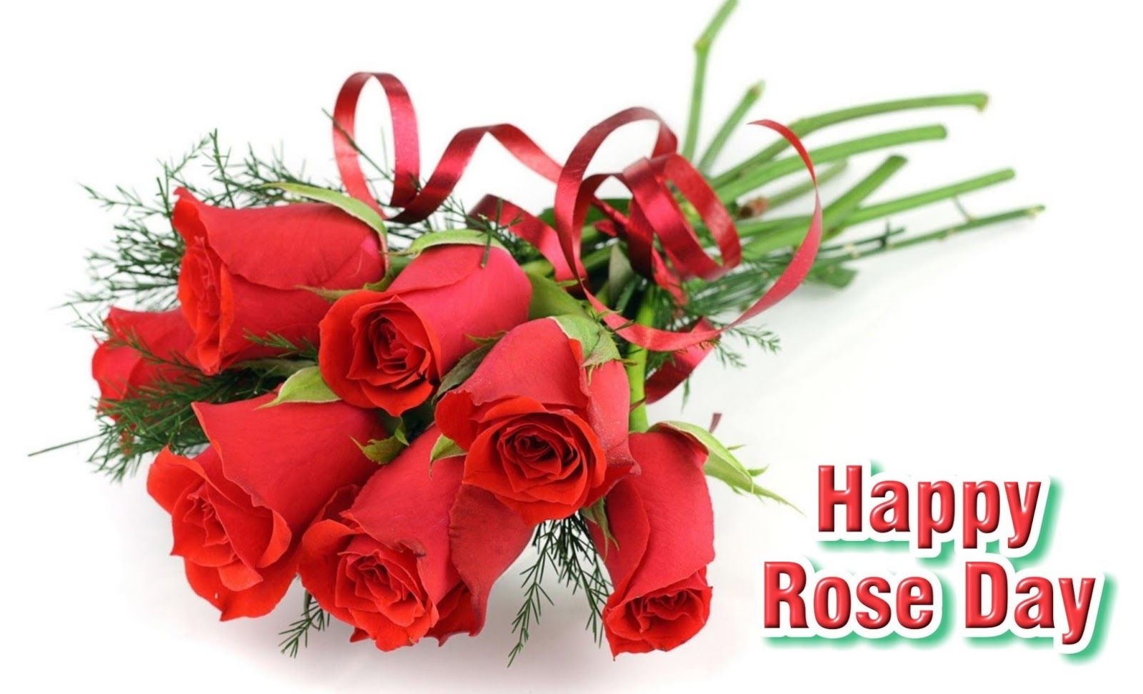 Happy Rose Day 2018 Hd Image For Fiance 50 Happy Rose Day