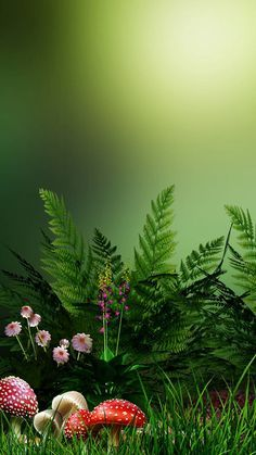 green nature wallpaper by dathys - da93 - Free on ZEDGE™