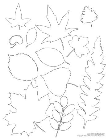 Leaf Templates  Templates    Template Shapes And