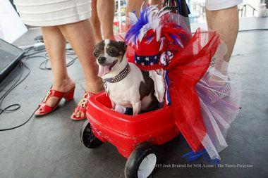 Krewe Of Barkus Dog Parade Throw Me Some Beads Mistah