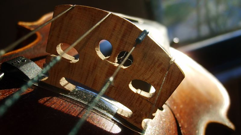 Love the sound of stringed instruments but want to avoid a