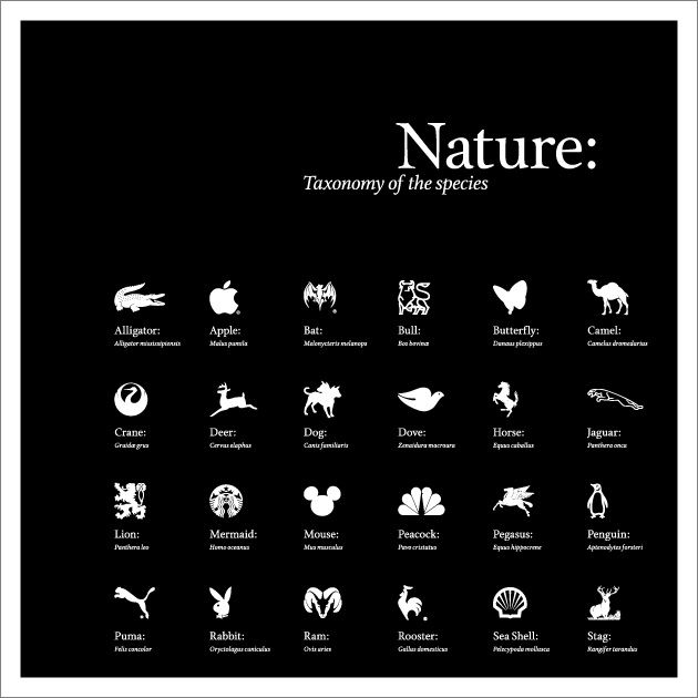 Nature: Taxonomy of the Species - a look at animals in corporate logos by Corey Holms