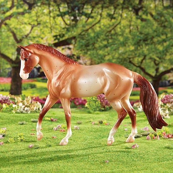 картинки лошадей брейер на природе федерация это