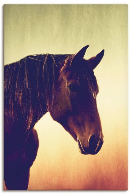 Leinwandbild »Tanja Riedel: Pferde Portät« #uniqueitemsproducts