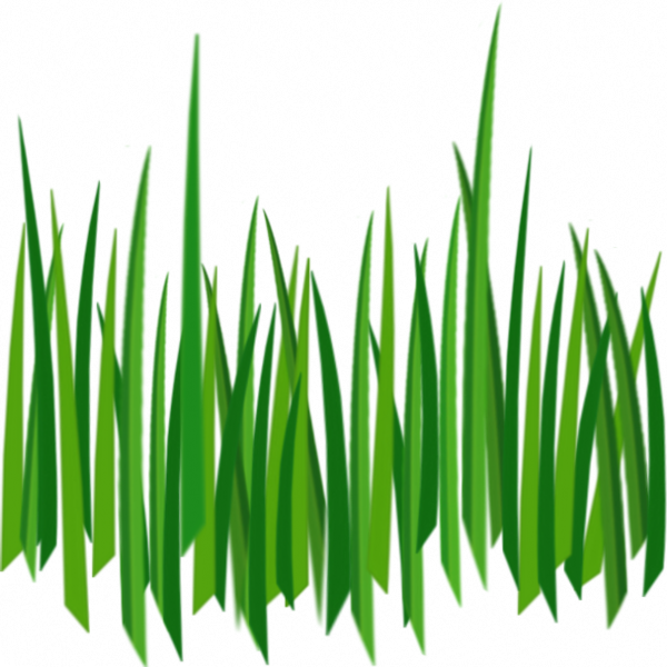 Pin By Kushalagarwalkushal On Png Grass Painting Grass Clipart Grass