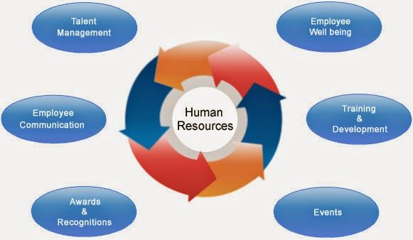 Human Resource Management Software: Its Multiple Benefits | Hr