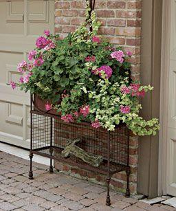 Fine Gardening Magazine container idea.