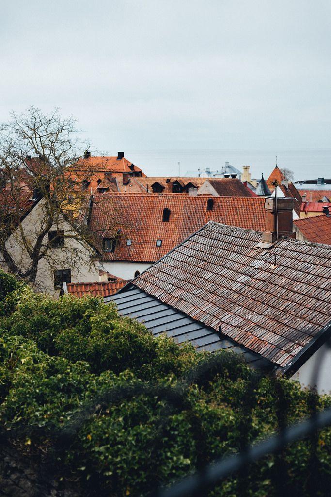 Babes in Boyland Retreat at Hotel Stelor, Gotland   Cashew Kitchen