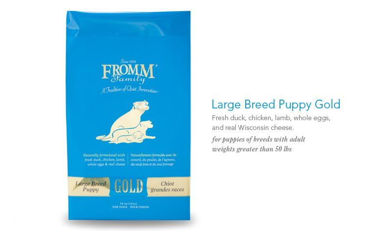 Large Breed Puppy Gold Dog Food Fromm Family Foods This Is What