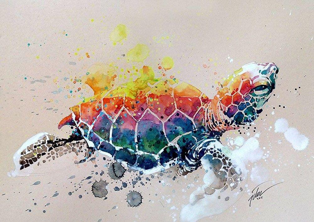 Cores Vibrantes E Aquarela Os Animais De Tilen Ti Arte Colorida