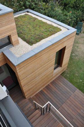 Le Toit Terrasse De L Extension Est Vegetalise Extension Maison Bois Agrandissement Maison Toit Vegetalise