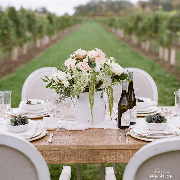 This Italian-inspired vineyard setting is perfect for a summer wedding! See more on WedLuxe.com (: @annagrinetsphotography, planner: @whiteluxeevents, floral: @fiorissimi_floral_design, venue: @twosisters_vineyards, tableware: @plateoccasions, chairs: @contemporaryfurniturerentals)