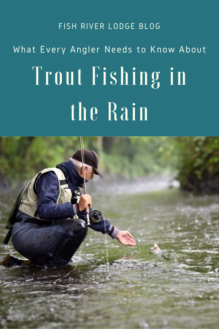 What Every Angler Needs To Know About Trout Fishing In The Rain Trout Fishing Tips Trout Fishing Trout