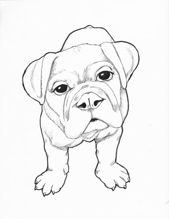 Line Art Animal Printable Dog Coloring Page Adult Coloring Page