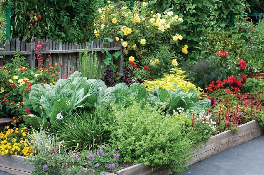 Create an edible landscape organic gardening society for Edible garden design ideas