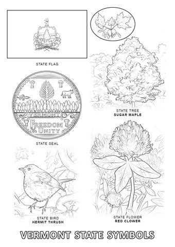 Vermont State Symbols Coloring Page From Vermont Category Select
