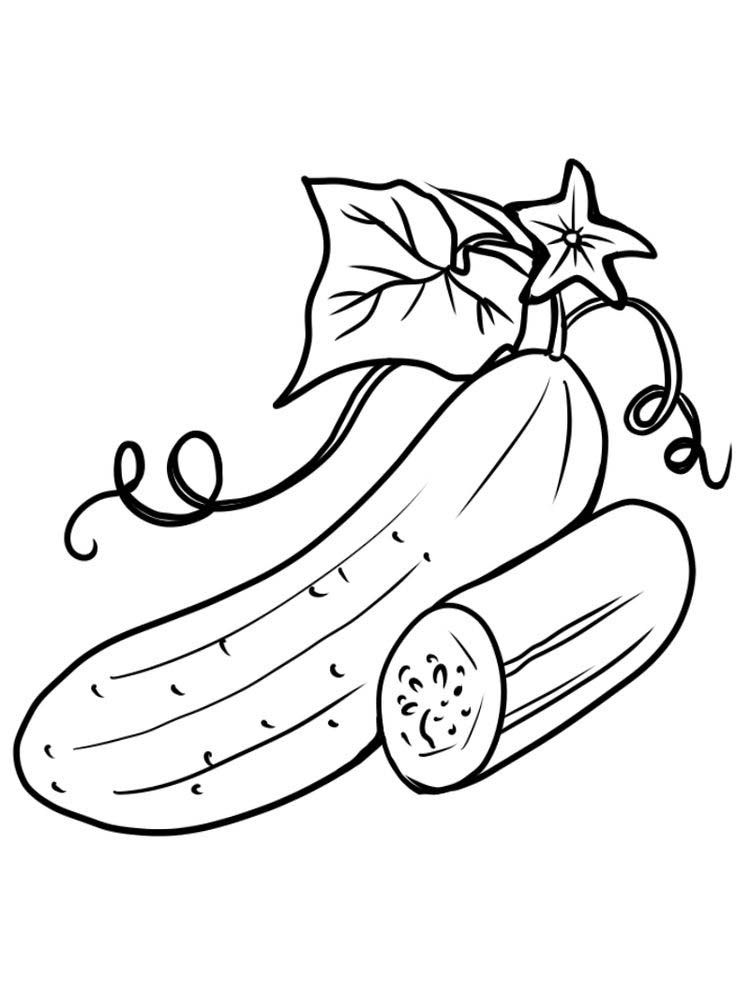 Cucumber With Leaf Coloring Pages Free Buah