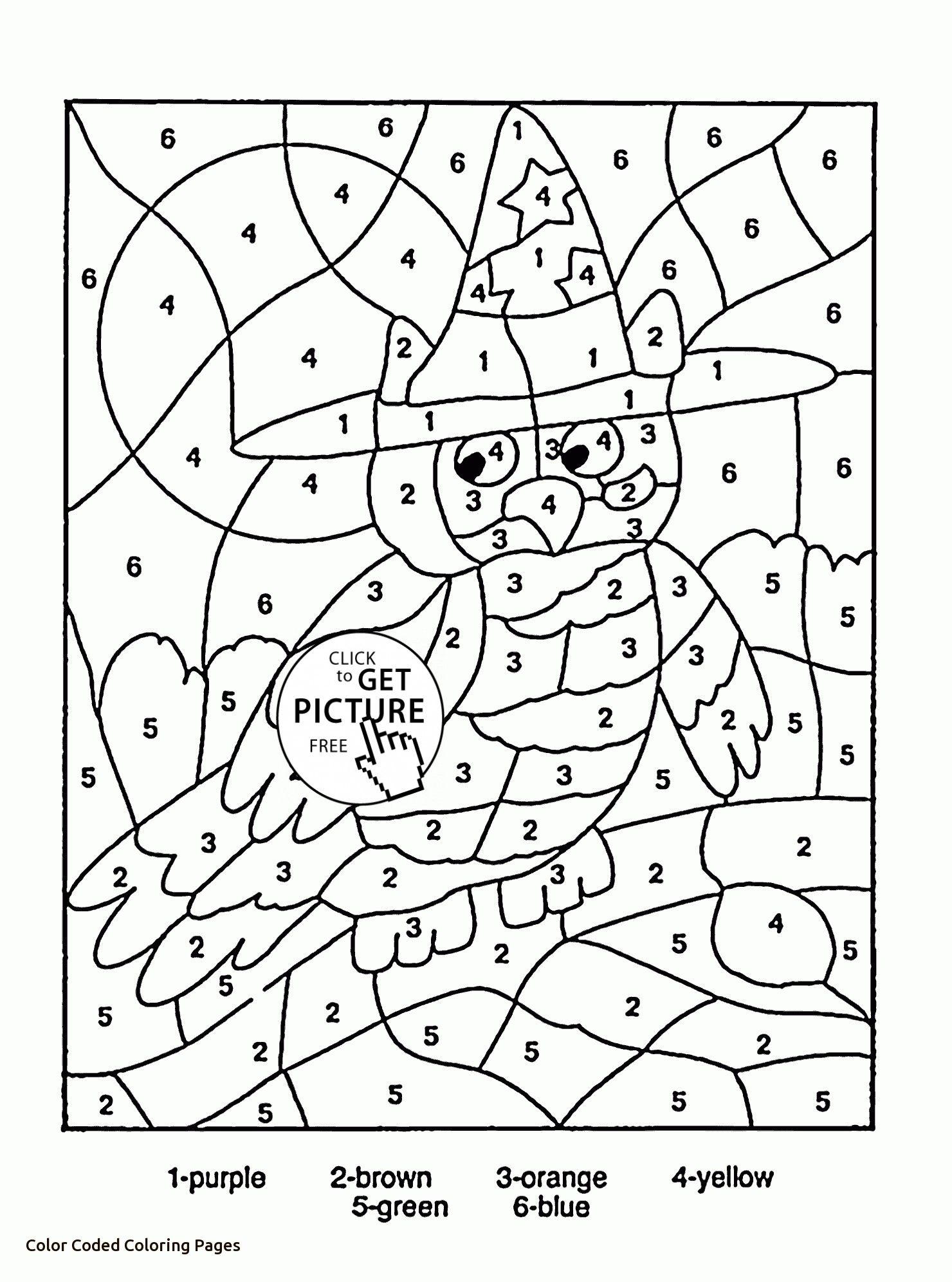 Color By Number Owl Coloring Page For Kids Education