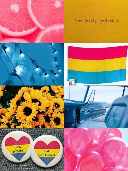 Pansexual pride tumblr