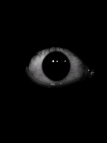 Blackberry World Scary Evil Eye Prank Horrific Prank App Evil Eye Horror Scary Eyes Light Vs Dark Scary Photos