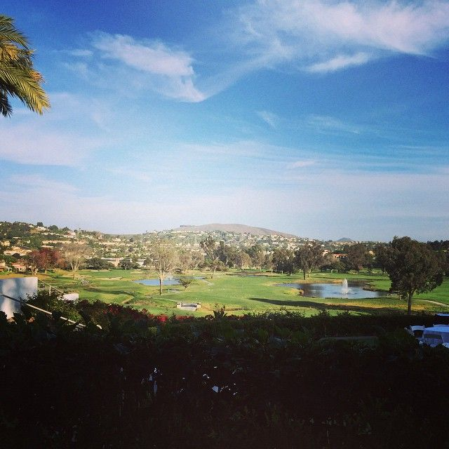 A gorgeous view of the golf course