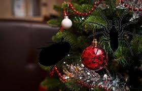 Bildresultat för gratis bilder julgran