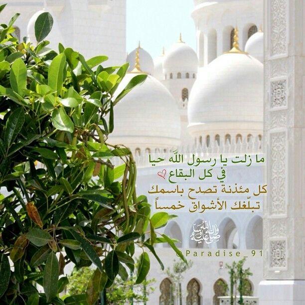 إن الله وملائكته يصلون على النبي يا أيها الذين آمنوا صلوا علية وسلموا تسليما Taj Mahal