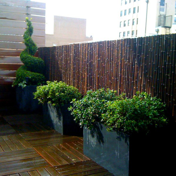 Top 50 Best Bamboo Fence Ideas Backyard Privacy Designs Bamboo