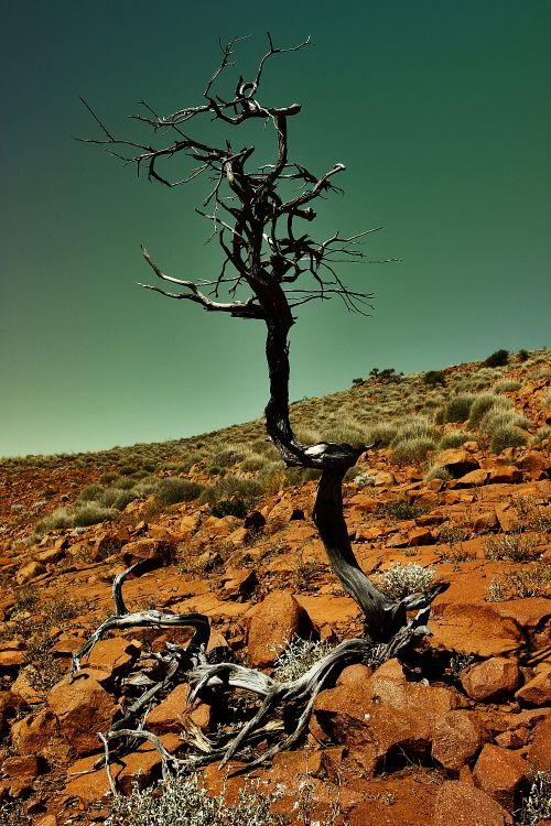 The Embankment neat Mt. Ive South Australia