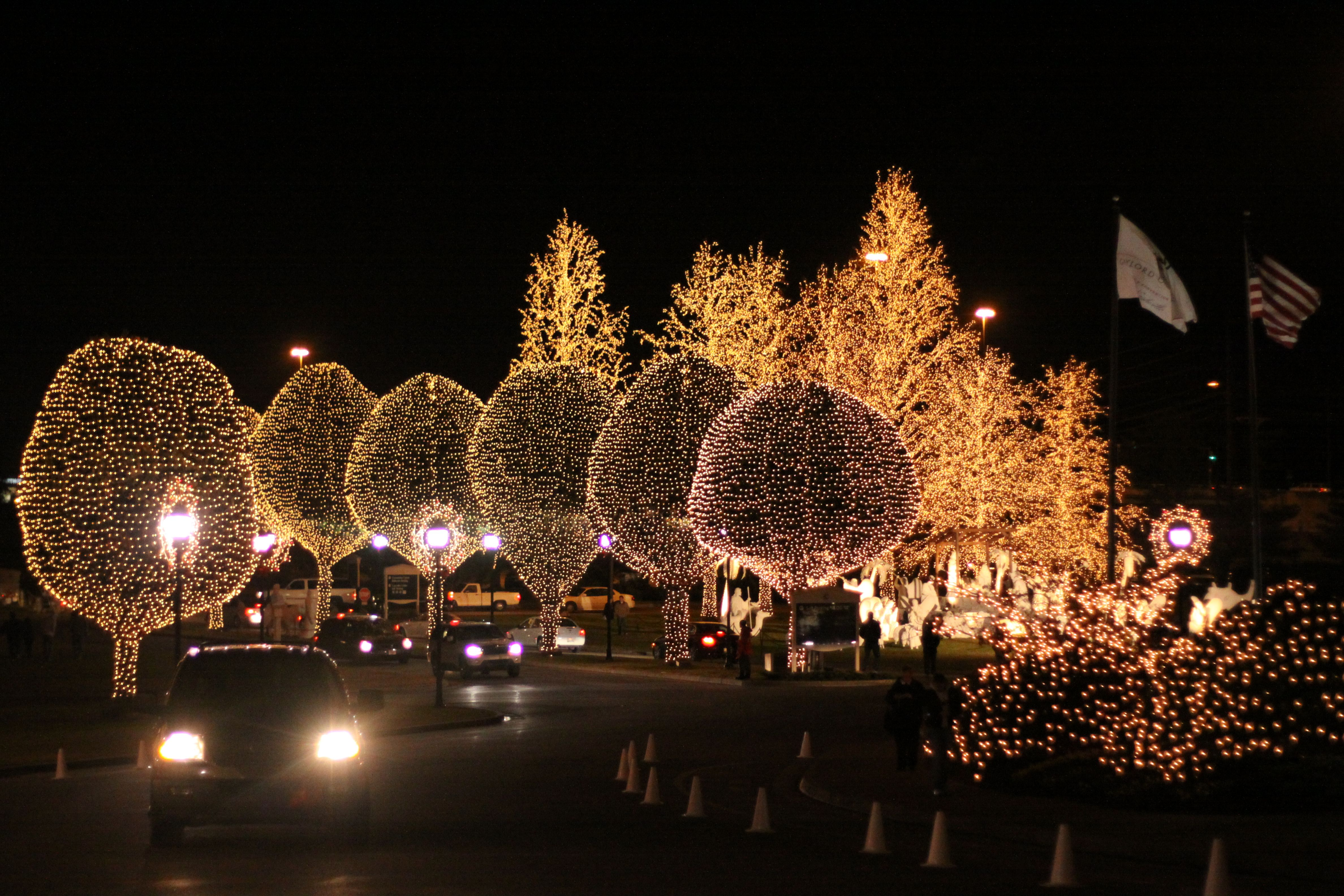 It's holiday lights season – time to relive the magic of your own childhood with your kids.
