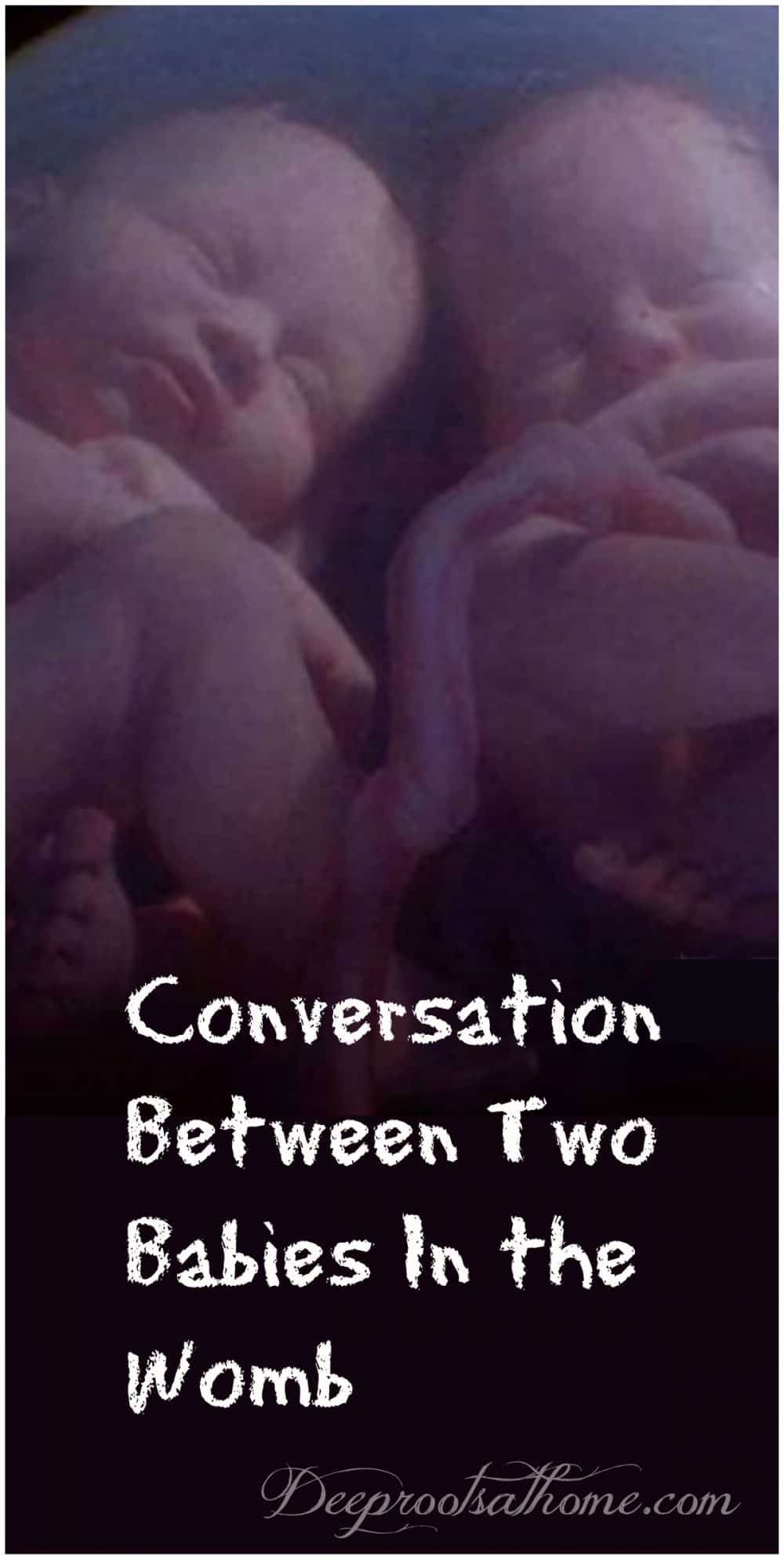 Conversation Between Two Babies In The Womb Of A Mother Baby In Womb Twins In The Womb Second Baby