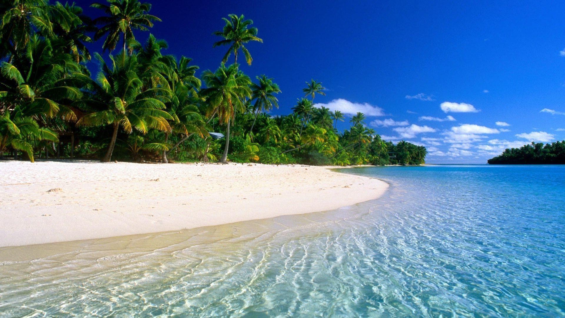 Tropical Beach Paradise Pemandangan
