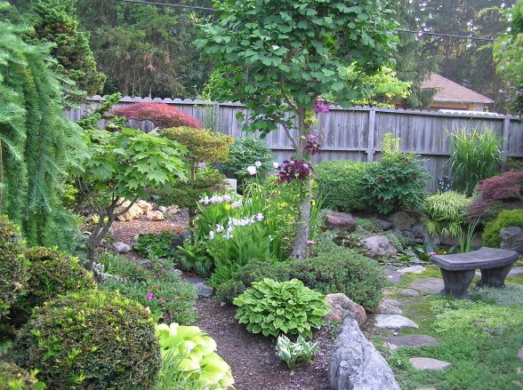 Mini Japanese Style Garden, About 30 X 90 Small Space Garden With Many  Types Of Plants. Gardens Design