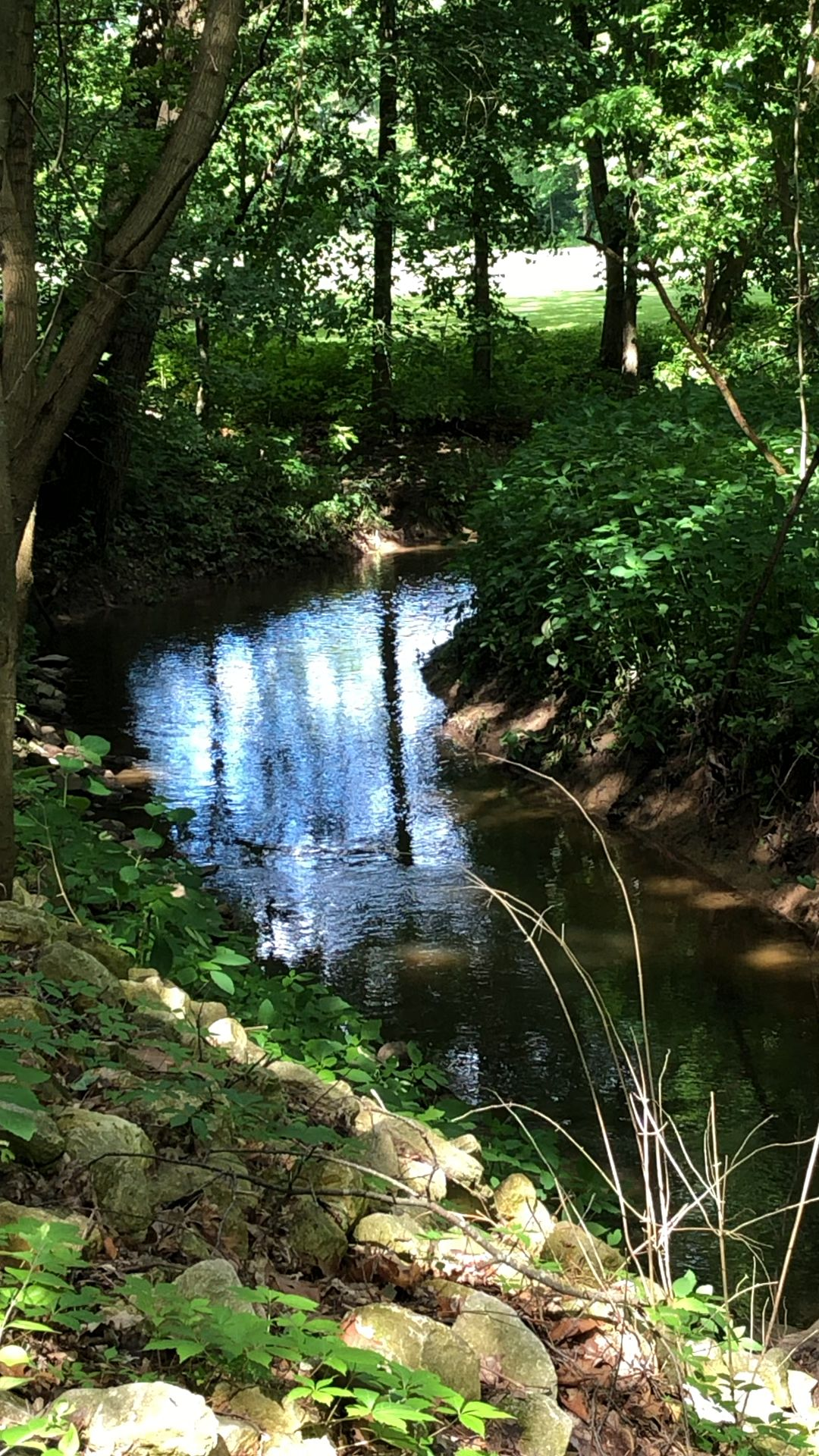 Nature Video Beautiful Nature Beautiful Places Nature Nature Photography