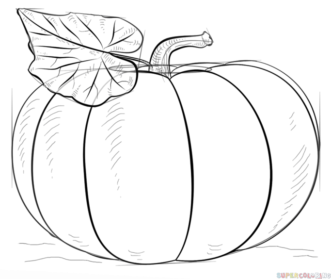 How to draw a pumpkin step by step drawing tutorials for for Funny pumpkin drawings