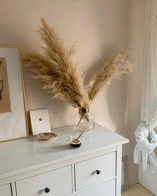 PAMPAS GRASS Natural 6 pcs Extra Fluffy Large 45″- Cortaderia Selloana Boho Wedding Decor Home Trend