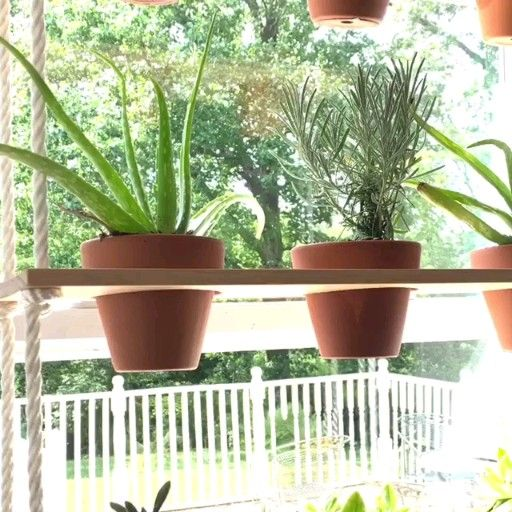 Herb Planter Ideas (How to Choose the Right Pot & How to Grow Herb in Pots) #hangingherbgardens