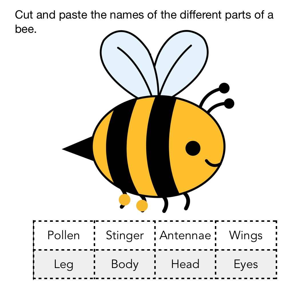 Bee Chart In