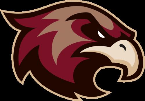 Sb Ice Hawks Logo Rgb 0 Png 500 346 Hawk Logo Animal Logo Sports Logo Design