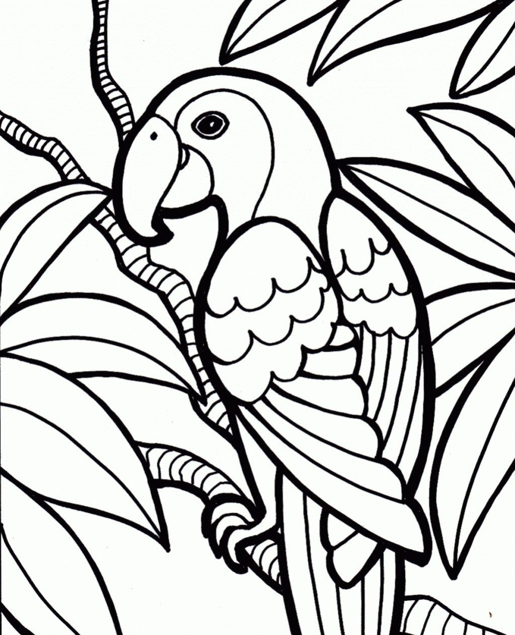 30 Great Photo Of Parrot Coloring Pages Albanysinsanity Com In 2020 Jungle Coloring Pages Bird Coloring Pages Easy Coloring Pages