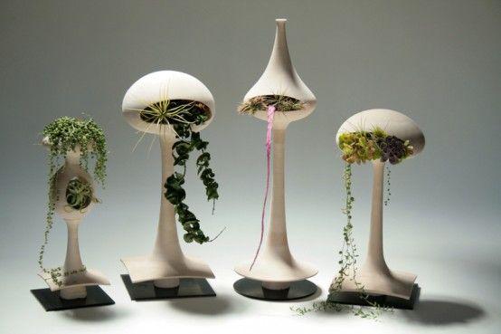 Indoor Plants that Purify Air in Living Spaces | Keramik