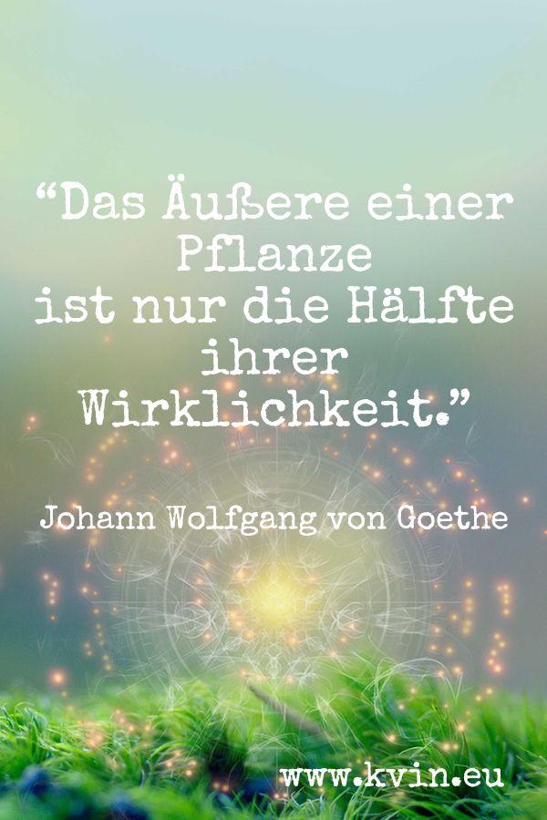 Spagyrik Feinstofflich Alchemie Goethe Natur Pflanzen Weisheiten Spruche Spruche Zitate Leben Spruche Garten