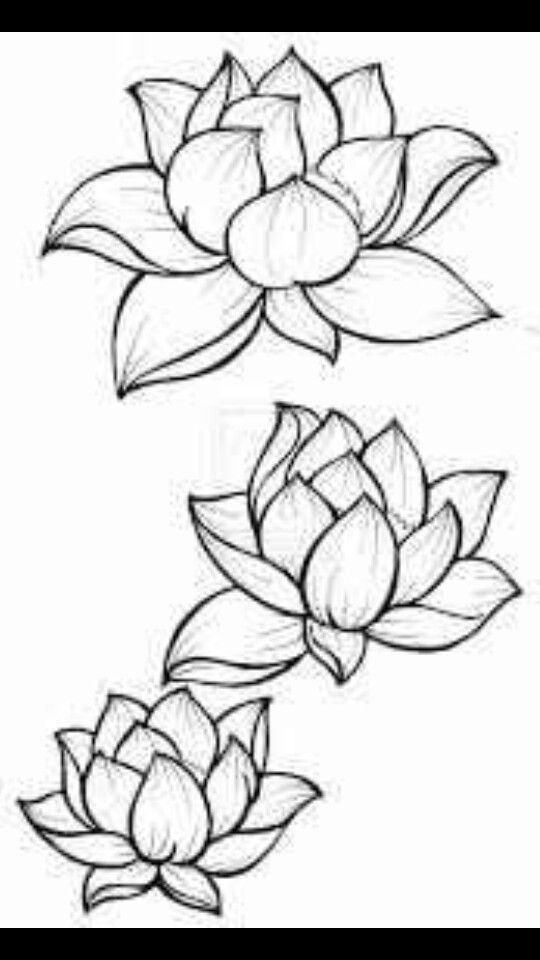 Lotus flower outline tattoos pinterest flower outline lotus lotus flower outline mightylinksfo