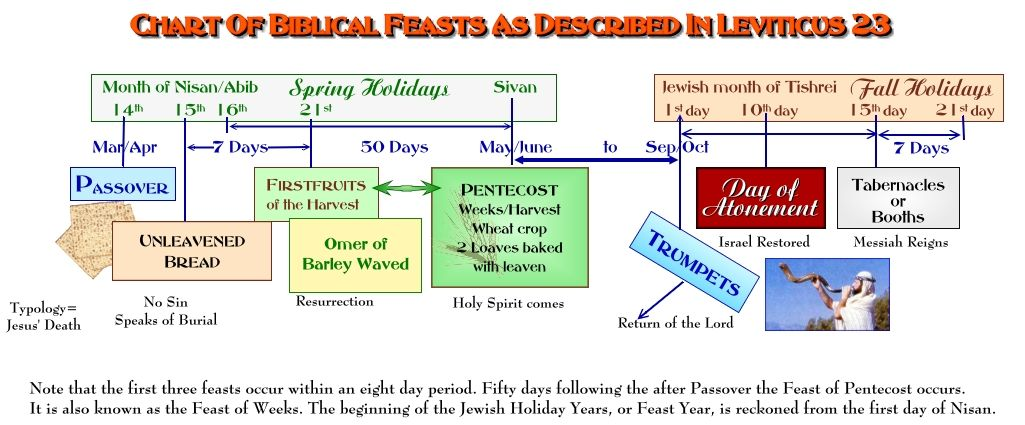 7 feasts of israel chart | The Biblical Feasts of Israel-Leviticus 23 | the Feasts of the Lord ...