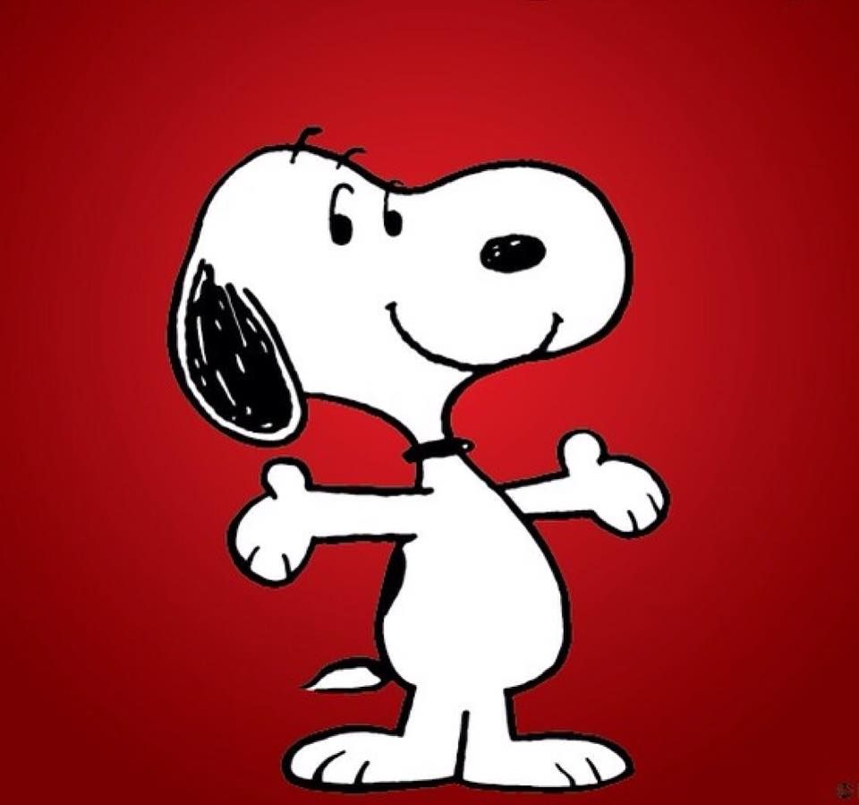 Pin De Mike Tripp Em Peanuts Gallery Snoop Desenho Desenhos