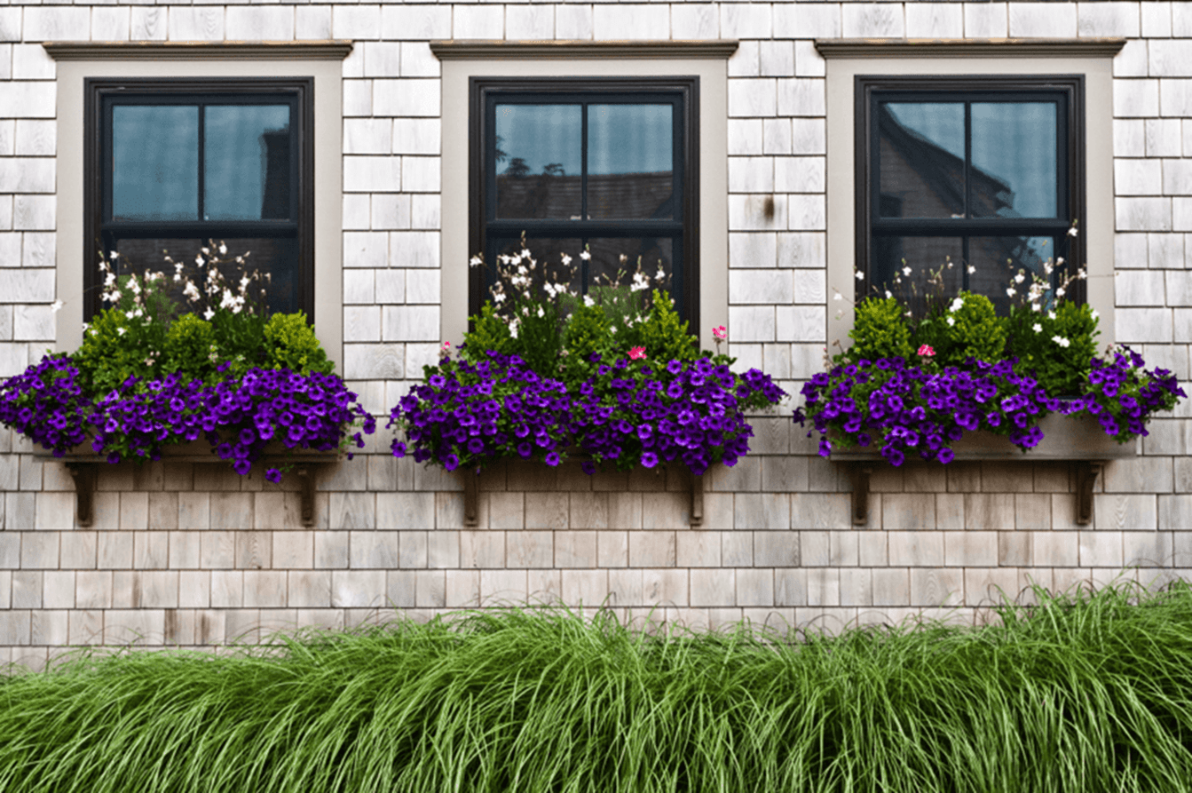 32 Beautiful Ideas Cascading Flowers For Window Boxes 1 With