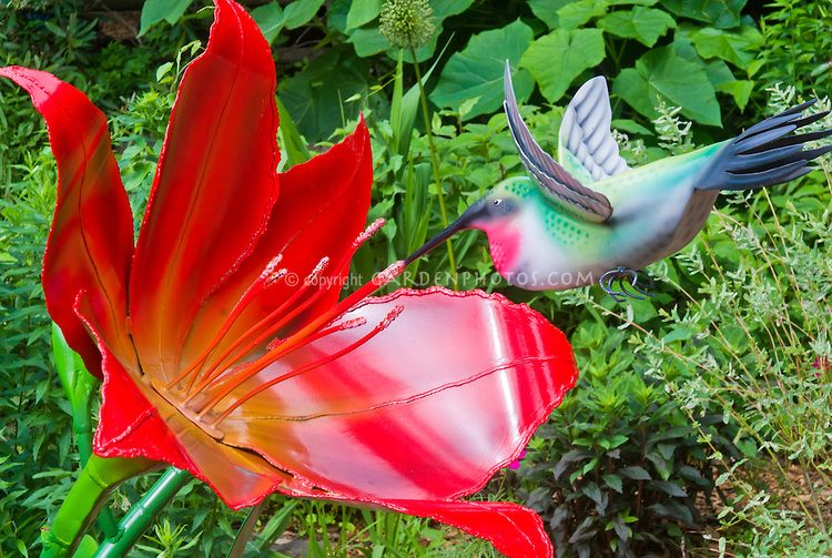 Great Hummingbird And Daylily Sculpture, Painted Steel Metal And Aluminum By  Adrienne Yorinks, Artist,