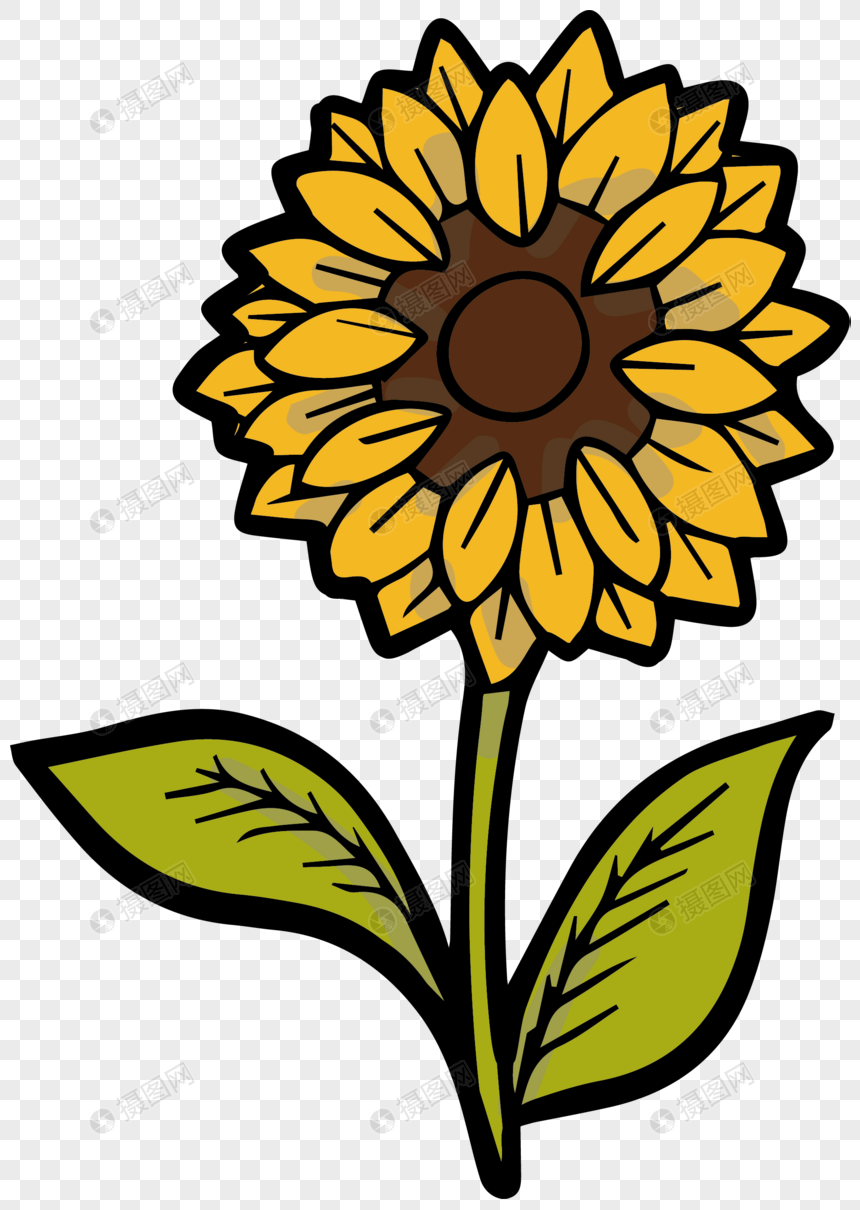 Sunflower Cartoon Photo Flower Drawing Sunflower Drawing Sunflower Flower Drawing